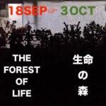 「生命の森 ~THE FOREST OF LIFE」展のお知らせ